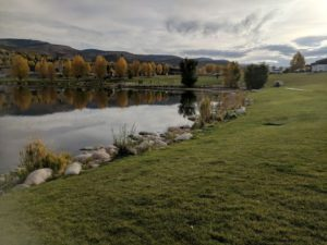 photo of Freedom Park Off Leash Dog Park in Edwards CO
