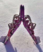 Photo of snowshoes in the snow