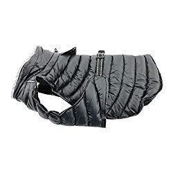 DOGGIE DESIGN Alpine Extreme Weather Puffer Dog Coat Waterproof