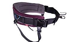 Non-Stop Dogwear Belt
