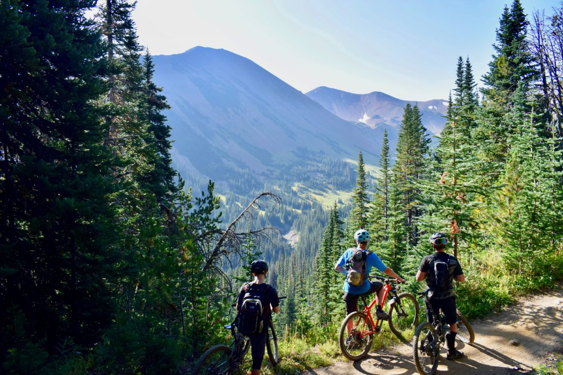 three mountain bikers on the trail