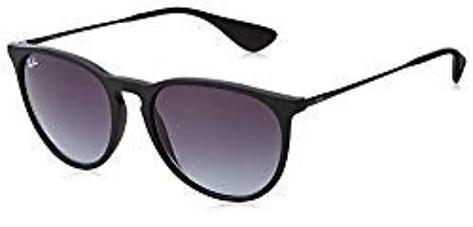 Ray Ban Erka Polarized Sunglasses