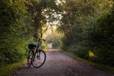 Bike on Bike Path