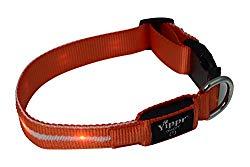 Yippr light up LED dog collar